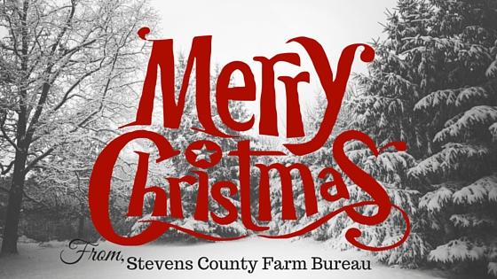 SCFB Christmas Blog